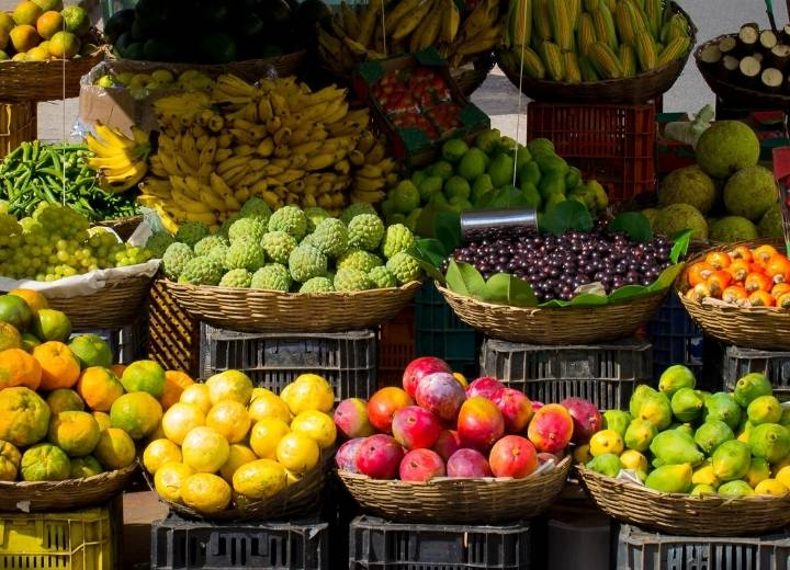 Fruits do not contain a lot of protein